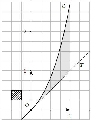 Exercice, primitive, intégrale convexité, exponentielle, tangente, courbe, terminale