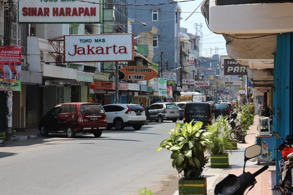 Primitives, exponentielle, cosinus, rationnelle, limite, terminale, Makassar, Sulawesi