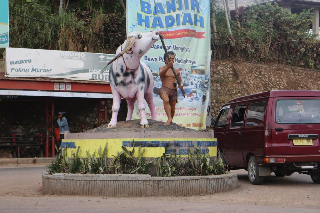 Lois continues, exponentielle, paramètre, espérance, terminale, Toraja, Sulawesi