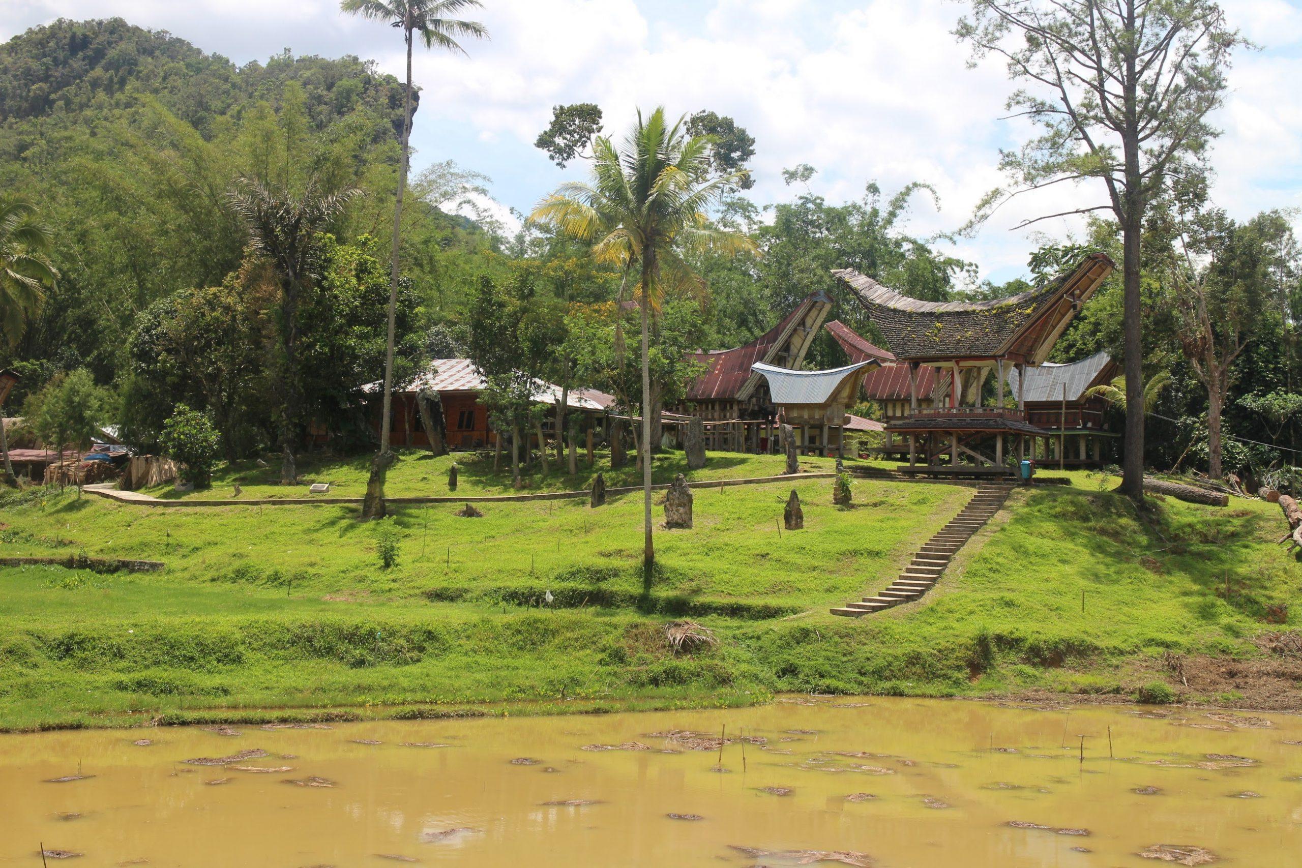 Produit scalaire, coordonnées, cosinus, hauteur, aire, ensemble, première, Kete Kesu, Toraja