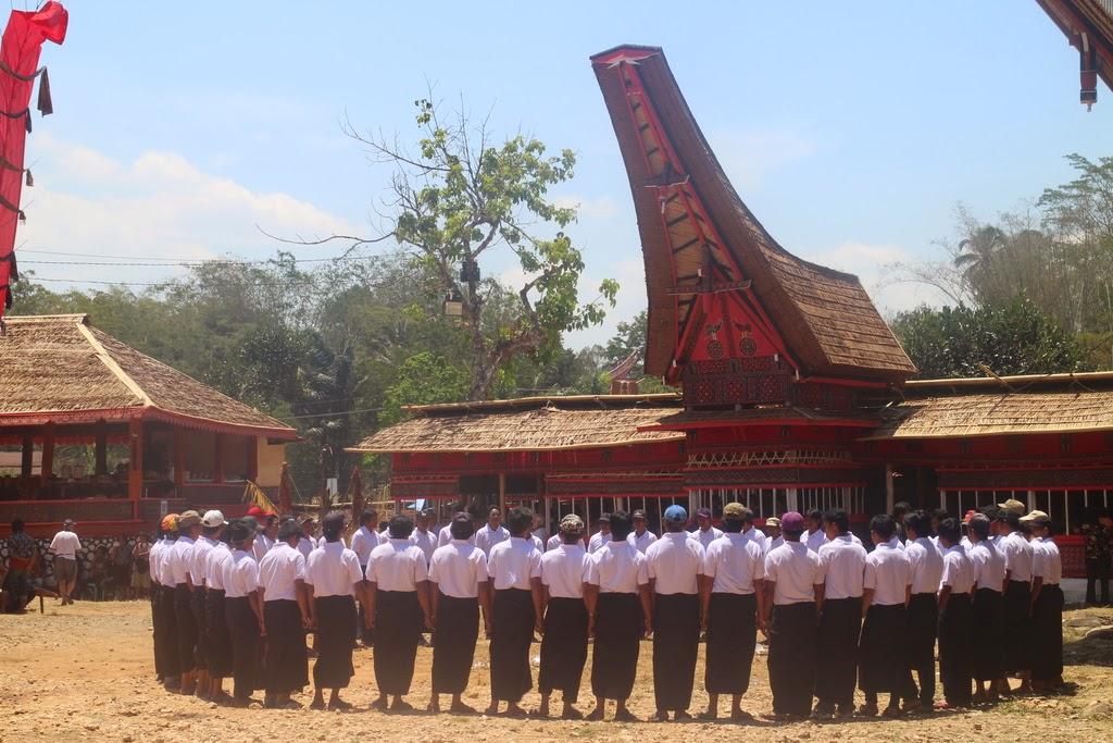 Dérivation, fonction, bénéfice, coût moyen, variation, première, Toraja, Sulawesi