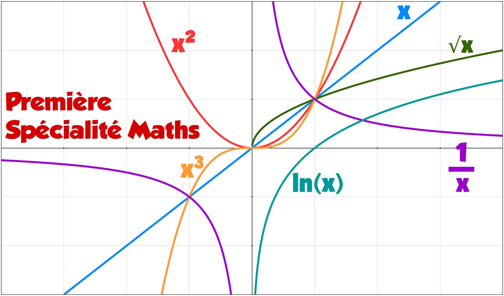 Bienvenue sur ma page de conseils pour exercices de spécialité Maths de première